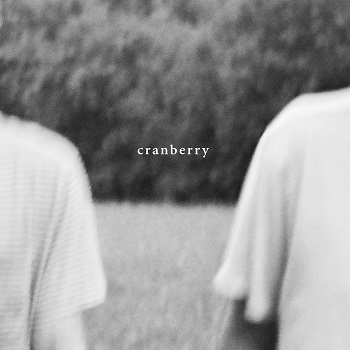 Hovvdy - Cranberry (2018)